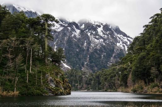 Laguna El Toro im Nationalpark Huerquehue (© Lena Labryga / Weonlandia)