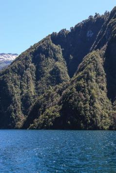 Berghang am Todos los Santos See (© Lena Labryga / Weonlandia)