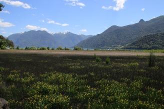 Blick zum Todos los Santos See (© Lena Labryga / Weonlandia)