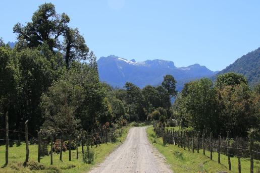 Auf dem Weg zum Nationalpark Alerce Andino (© Lena Labryga / Weonlandia)