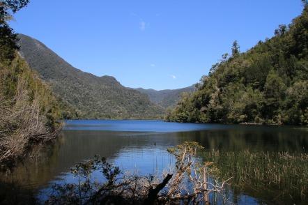 Lagune im Nationalpark Alerce Andino (© Lena Labryga / Weonlandia)