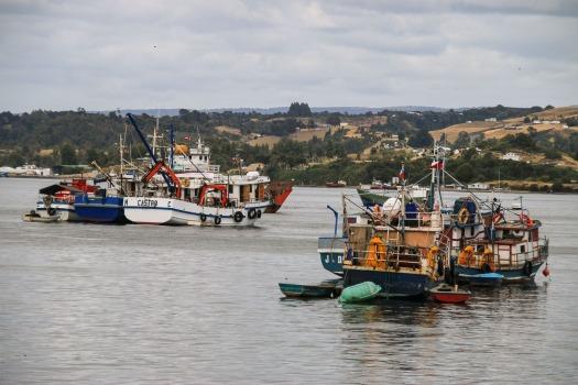 Im Hafen von Dalcahue (© Lena Labryga / Weonlandia)