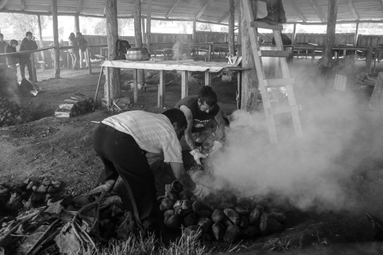 Zubereitung des Curanto (© Lena Labryga / Weonlandia)